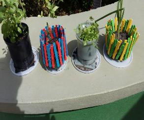 Crianças e adolescentes do Bairro da Paz realizam projetos  em apoio ao Dia Mundial do Meio Ambiente