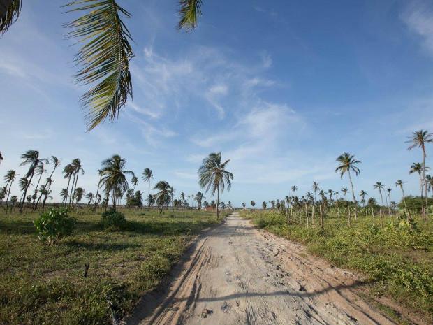 Praias do Ceará serão cenário da campanha de verão da Rota do Mar